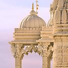 The Swaminarayan Mandir - Close-up by Holly Cawfield