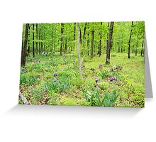 Iris In a Spring Forest Greeting Card