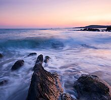 Rosscarbery Bay by Michael Walsh