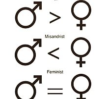Misogynist, Misandrist, and Feminist by dragon-s