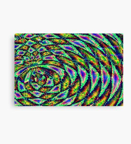 Kiwi - digital art Canvas Print