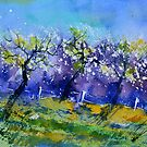 watercolor 511013 by calimero