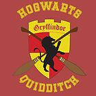 Gryffindor Quidditch Team by MeitisMitsune