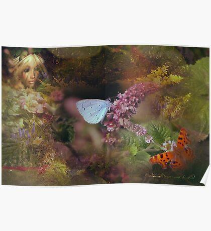 Butterfly Watcher  Poster