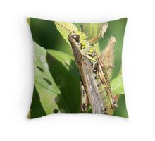 It Isn't Easy Being Green Throw Pillow