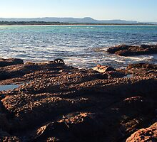 Windang island - post processed by Vanessa Pike-Russell