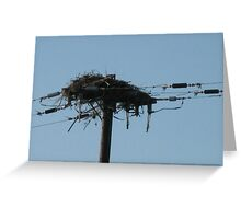 Man and Nature collide Greeting Card