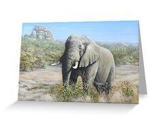 Pilansberg Elephant  Greeting Card