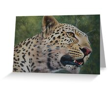Phil's Leopard - acrylic Greeting Card