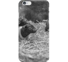 Happy Little Piglets iPhone Case/Skin