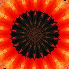 Orange One by TerraChild