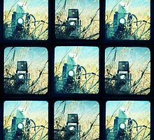 Kodak Duaflex IV & Argoflex75 by Jules Campbell