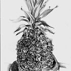 Pinapple in pencil by tonyarama