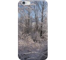 charm winter afternoon in the white scenery iPhone Case/Skin