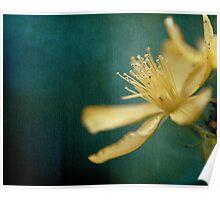 Jamais trop de fleurs... Poster