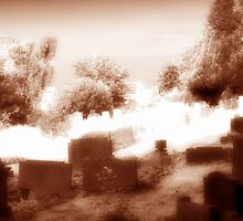 Old Town Cemetery by mikepom
