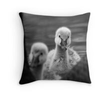 Cygnet II Throw Pillow