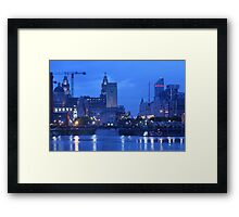La Princess Hangs Out with the Birds Framed Print