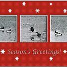 Goldeneye Trio in Red Snowflake Frame, Season's Greetings by toots