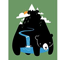 The Mountain Bear Photographic Print