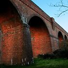 Viaduct Nr Hockley Lights by Christopher Newberry