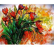 Flowers...Tulips Photographic Print