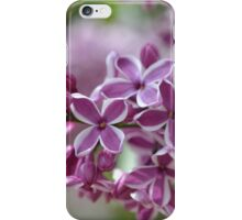 Two-Tone Lilacs iPhone Case/Skin