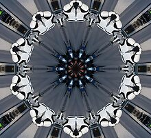 Storm Troopers  by Laurie Puglia