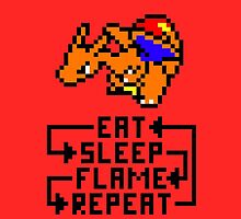 Charizard used Flame Wheel by JakeSynth