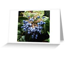 Fruits of winter Greeting Card