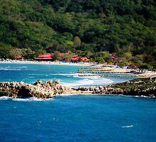 Adrenaline Beach Labadee Haiti by Shelley Neff