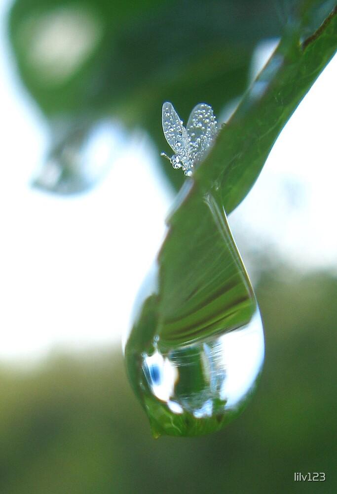 Dewdrop topper by lilv123