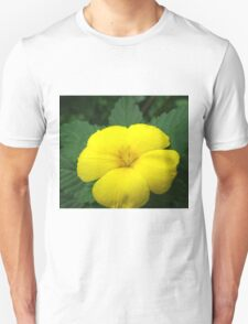 Single Yellow Flower T-Shirt