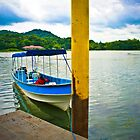 Gamboa Lake by leeevi