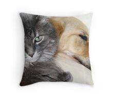 Shared Pillow Throw Pillow