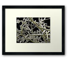 Puzzle anyone? Framed Print
