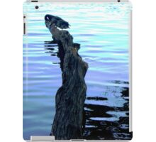 Reflections and waves iPad Case/Skin