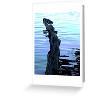 Reflections and waves Greeting Card
