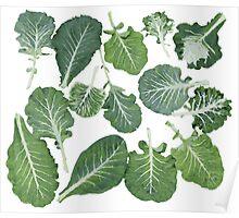 We're eating these wonderful collard greens... Poster