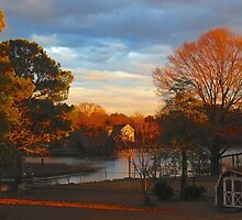 Late Afternoon Along the Creek  (1502026106VA) by photroen