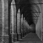 Arches at L' Agenzia di Pollenzo by MaluC