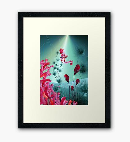 seahorse 1 Framed Print