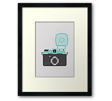 Diana Camera Framed Print