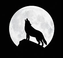 Howling Wolf - Moon by badbugs