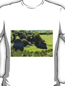 Birth Place Of The Liberator T-Shirt