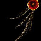 The Red and Yellow Flower by Gabriel Martinez