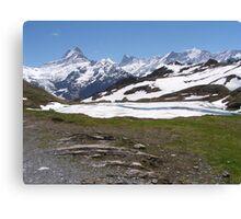 Near Bachalpense Canvas Print