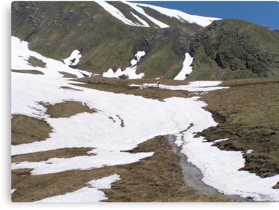 Hiking in Switzerland by Laura Puglia