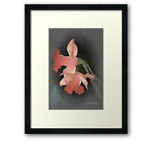 DAFFODILS AGLOW 2 Framed Print