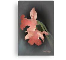 DAFFODILS AGLOW 2 Canvas Print